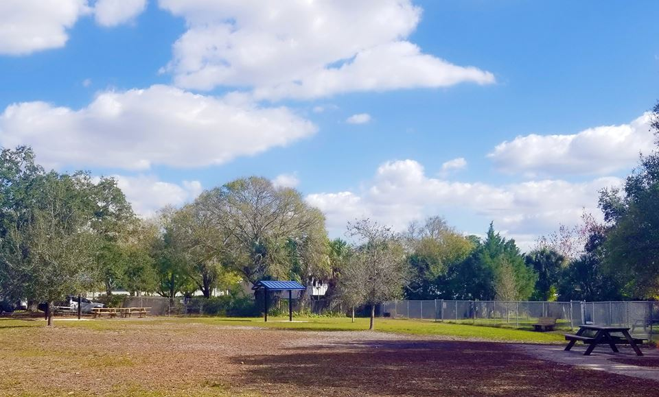 Outdoor dog park area